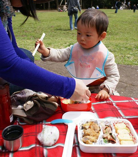手賀の丘公園ピクニック ランチ