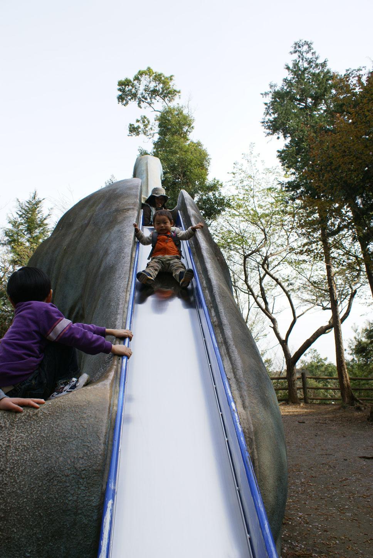手賀の丘公園 恐竜滑り台